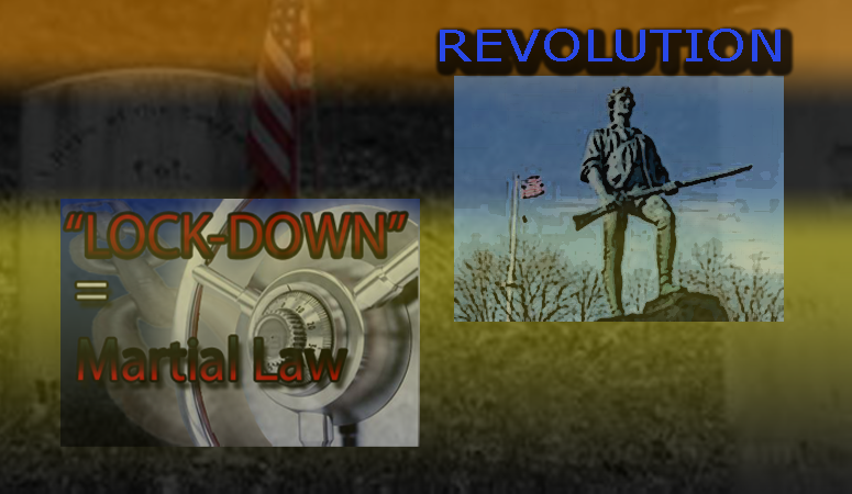 Lockdown revolution
